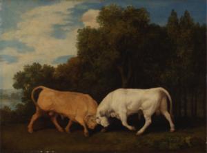 george-stubbs-bulls-fighting